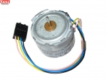 Mini Steppermotor AEG SO21/24 P5337 Kemo